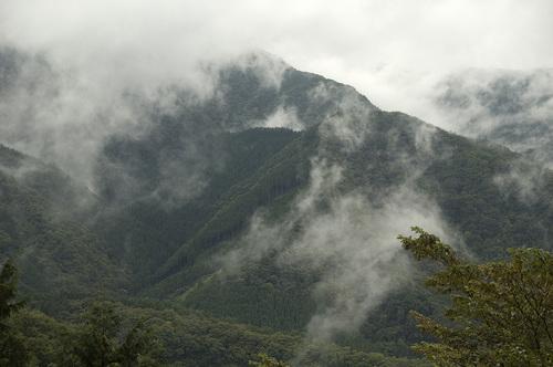 山肌_DSC_6732.jpg