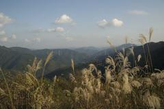林道からの眺め_DSC_0153.jpg