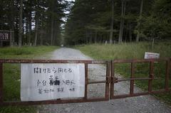 林道_DSC_0084.jpg