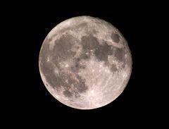 満月_4中_KICX3619.jpg