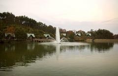 雲海の池_DSC_3287.jpg