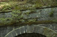 天城山隧道_DSC_6427.jpg
