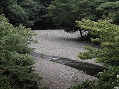 河原KICX1377淡色.jpg