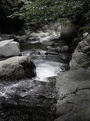 渓流モノトーンKICX1362.jpg