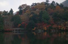 湯ノ湖_夕刻_DSC_2646.jpg