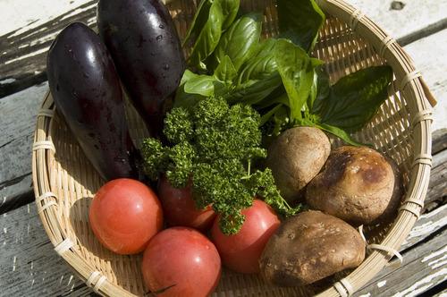 野菜材料_DSC_6662.jpg