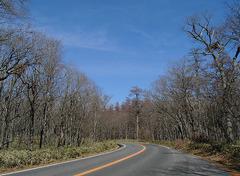 KICX2482_冬の道.jpg